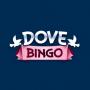 Dove Bingo Casino Review